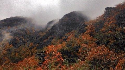 Ruta Devesa do Cervo y Pico Montouto en Quiroga