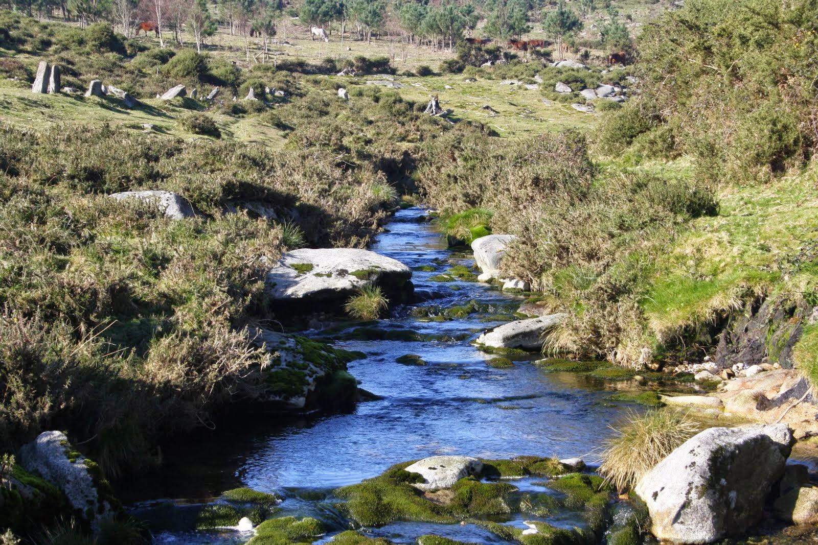 Río Pedras